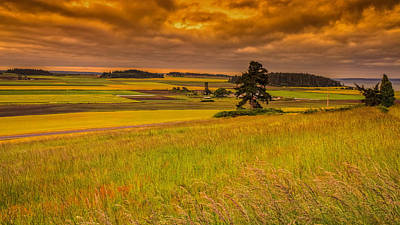 Photograph - Ebey Prairie by Thomas Hall