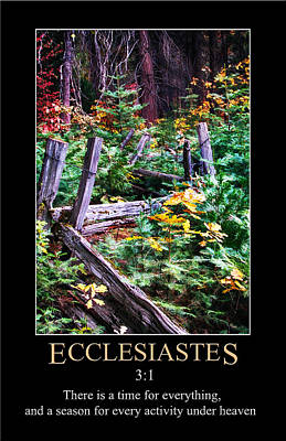 Digital Art - Ecclesiastes 3 by John Haldane