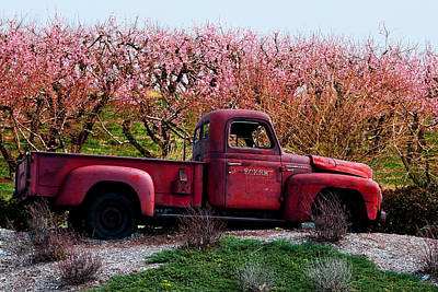 Eckert Orchards Belleville Art Print by John Freidenberg