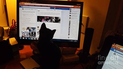 When Life Gives You Lemons - Eclipse Loves Facebook by Jussta Jussta