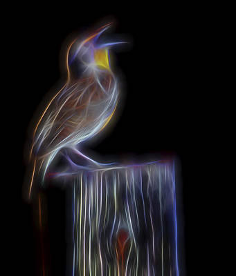 Meadowlark Digital Art - Ecstatic Meadowlark by William Horden