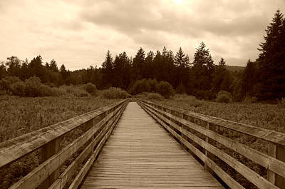 Photograph - Ed Nixon Trail Boardwalk - Sepia by Marilyn Wilson