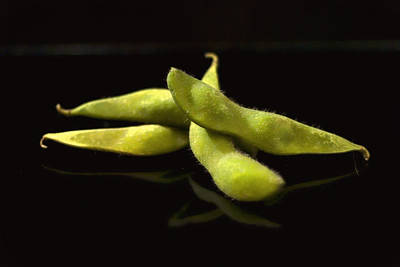Photograph - Edamame Soy Beans by Ron Roberts
