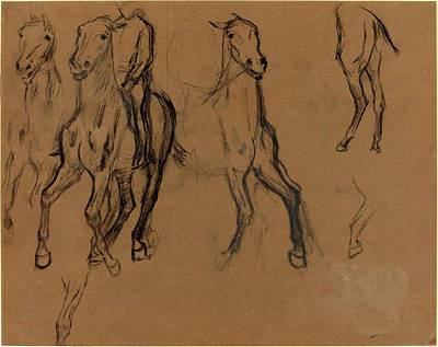 Charcoal Horse Drawing - Edgar Degas, French 1834-1917, Study Of Horses by Litz Collection