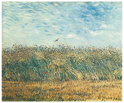 Larks Painting - Edge Of A Wheat Field With Poppies And A Lark by Vincent Van Gogh