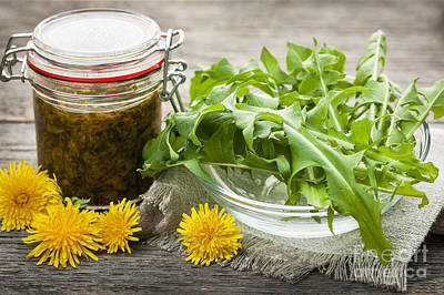 Edible Dandelions And Dandelion Jam Art Print