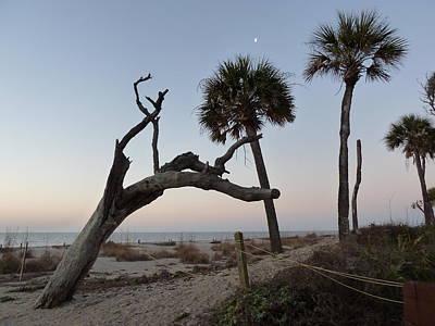 Photograph - Edisto Island - Dawn by Joel Deutsch