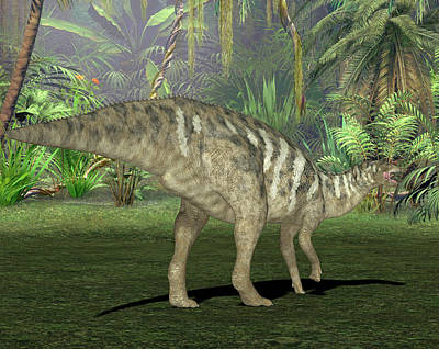 Edmontosaurus Dinosaur Art Print