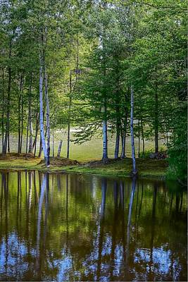 Photograph - Edson Hill Reflections by John Nielsen