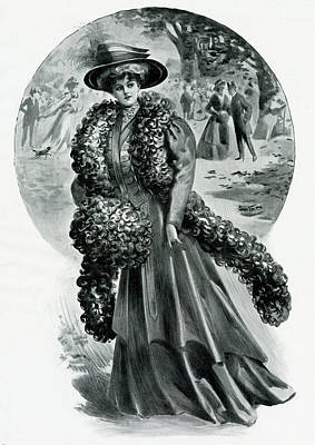 Boa Constrictor Drawing - Edwardian Woman Wearing A Bronze Shade by Mary Evans Picture Library