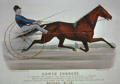 Digital Art - Edwin Forrest 1878  Poster Reproduction  by Lesa Fine