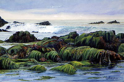 Laguna Beach Painting - Eelgrass At Low Tide by Bill Hudson