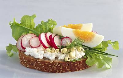 Egg And Cottage Cheese Salad On Bread Art Print