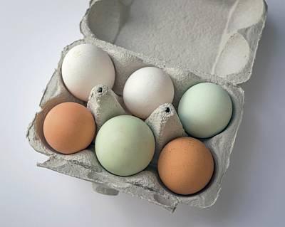 Egg Pigmentation Art Print by Robert Brook
