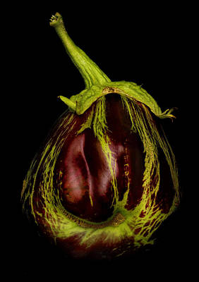 Photograph - Eggplant From Jennifers' Garden by Robert Woodward