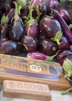Aborigine Photograph - Eggplant by Rebecca Cozart