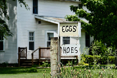 Photograph - Eggs And Hoes by David Arment