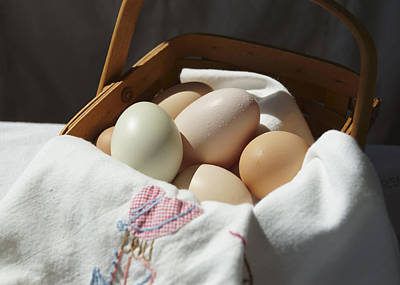Photograph - Eggs In A Basket 2 by MM Anderson