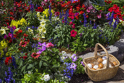 Garden Flowers Photograph - Eggs In A Basket  by Garry Gay