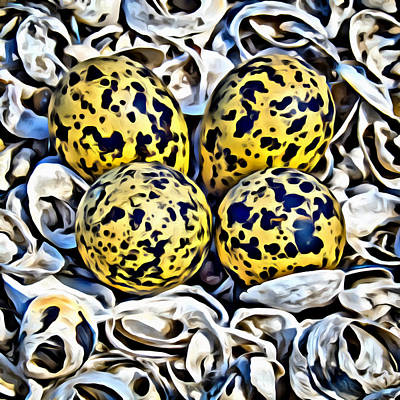 Digital Art - Eggs In Shell Nest by Patrick M Lynch