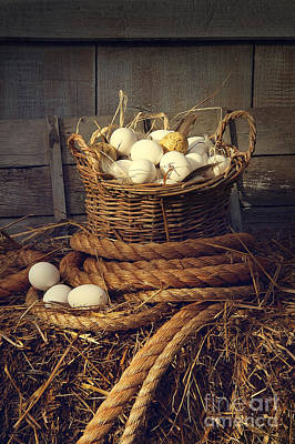 Photograph - Eggs In Wicker Basket On A Bale Of Hay by Sandra Cunningham