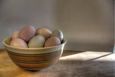 Eggs Art Print by Jane Linders