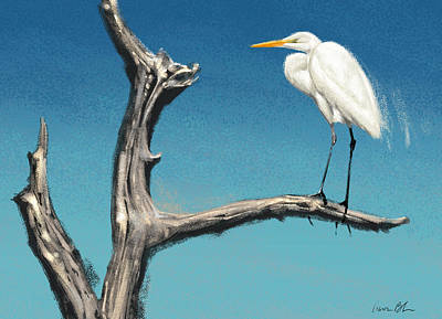 Florida Digital Art - Egret by Aaron Blaise