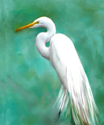 Waterfowl Painting - The Graceful White by Colleen Taylor