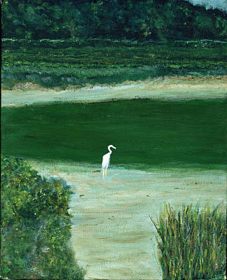 Painting - Egret by David Nichols
