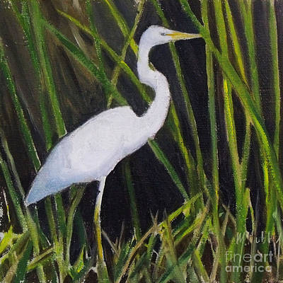 Colored Pencils - Egret in Marsh by Mary Hubley