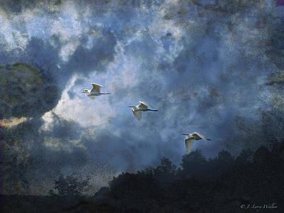 Digital Art - Egrets Morning Fly by J Larry Walker