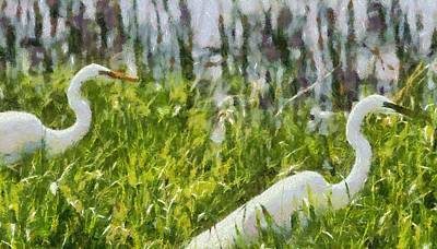 Egrets Painting Art Print by Dan Sproul