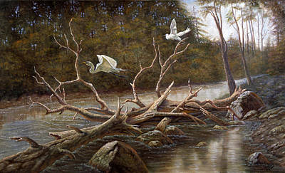 Ibis Painting - Egret's Paradise by Gregory Perillo