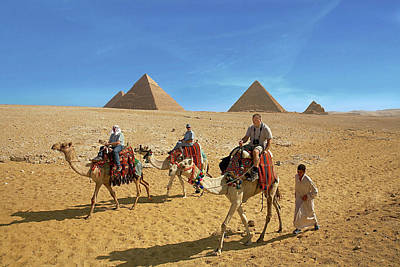 Camels Photograph - Egypt, Cairo, Giza, Tourists Ride by Miva Stock