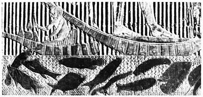 Catfish Painting - Egypt Fishing Scene by Granger