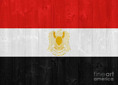Flags On Faces Semmick Photo - Egypt flag by Luis Alvarenga