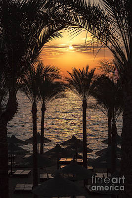 Sinai Photograph - Egypt Sunrise by Jane Rix