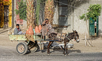 Arcitecture Photograph - Egyptian Donkey And Cart by Linda Phelps