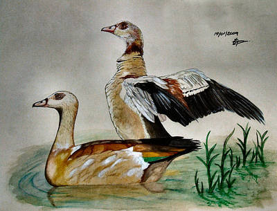 Waterfowl Painting - Egyptian Geese by Tracey Beer