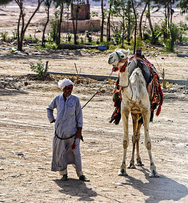 Thebes Photograph - Egyptian Man With Camel by Linda Phelps