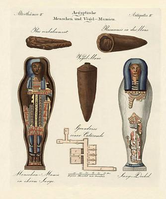 Archaeology Drawing - Egyptian Mummies by Splendid Art Prints