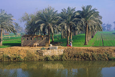 Photograph - Egyptian Village by Mark Greenberg