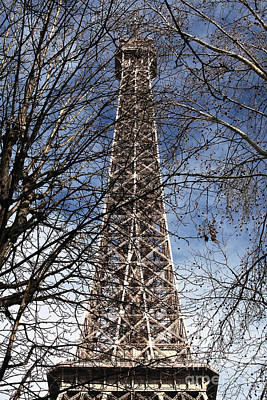 Photograph - Eiffel Behind The Branches by John Rizzuto