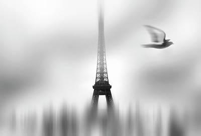 Dove Wall Art - Photograph - Eiffel Serene by Sol Marrades