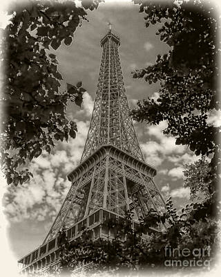 Photograph - Eiffel Through Trees Sepia by Ken Johnson