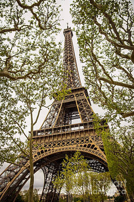 Park Scene Photograph - Eiffel Tower by Carlos Caetano