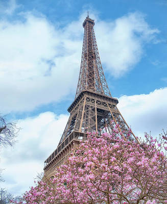 Cherry Blossoms Photograph - Eiffel Tower Spring by Cora Niele