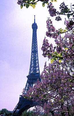 Eiffel With Blossoms Art Print by Kathy Yates