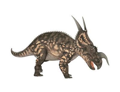 Paleozoology Photograph - Einiosaurus Dinosaur by Friedrich Saurer