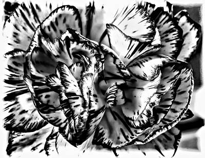 Steve Harrington Digital Art - Either...or by Steve Harrington